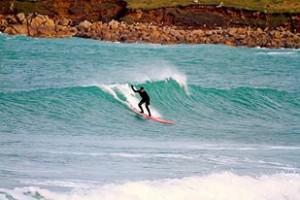 sian surf